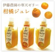 柑橘ジュレ 無農薬 野菜 自然食品 東京