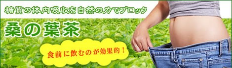 桑の葉の特有成分デオキシノジリマイシンでダイエットしましょう!|美と健康のヴィーナース