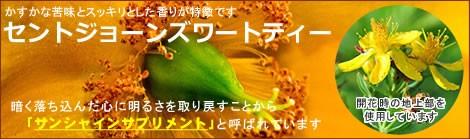 セントジョーンズワートは、サンシャインサプリメントと呼ばれる元気を取り戻すハーブ|美と健康のヴィーナース