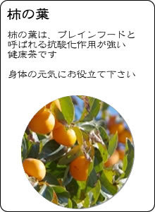 ヴィーナース 国産柿の葉茶