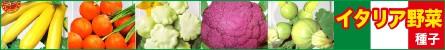 イタリア野菜の種子が大特価!