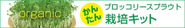 簡単♪ブロッコリースプラウト栽培セット!