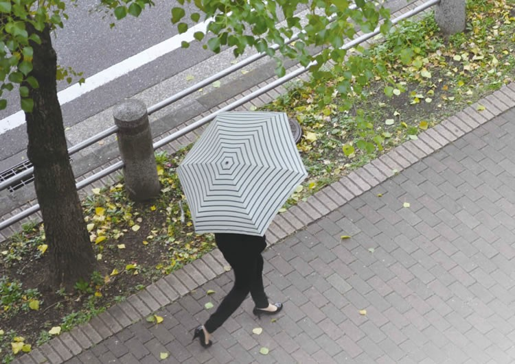 HUS. ハス 傘