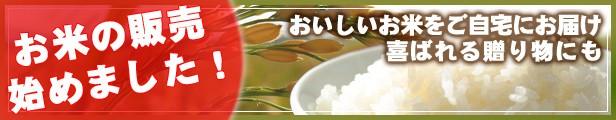 おいしいお米をお届け!まとめ買いにも便利