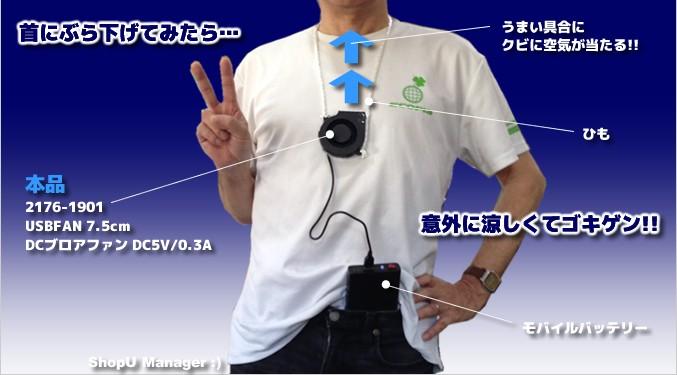 デジタルテスターDT700D (大画面ディスプレイ