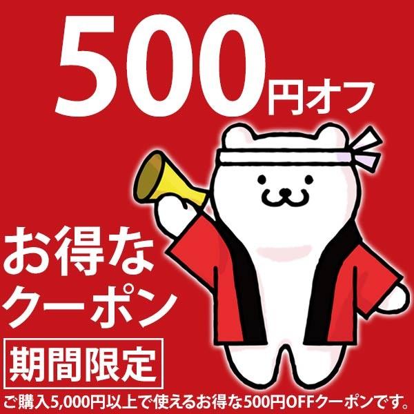 5,000円以上で使える500円OFFクーポン