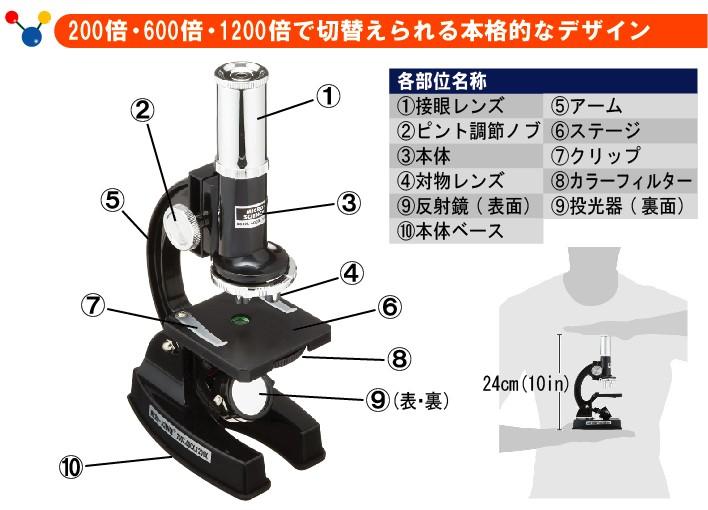 200倍・600倍・1200倍で切替えられる本格的なデザイン (1)接眼レンズ(2)ピント調節ノブ(3)本体(4)対物レンズ(5)アーム(6)ステージ(7)クリップ(8)カラーフィルター(9)反射鏡(裏面:投光器(10)本体ベース)