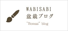 wabisabiブログ