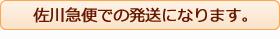 佐川急便での発送になります。