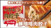 とんきっき肉餃子