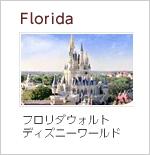フロリダウォルトデイズニーワールド