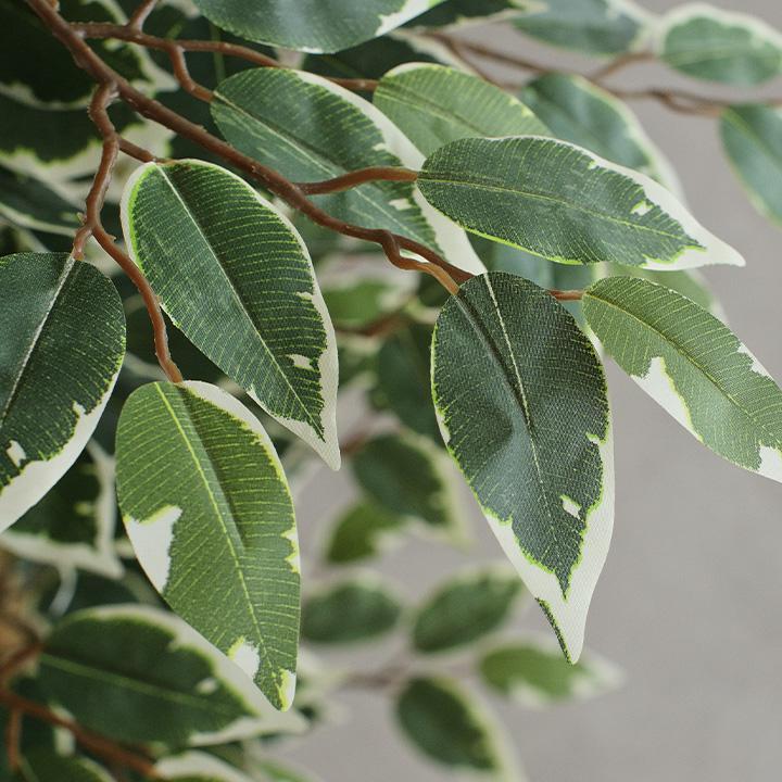 人工観葉植物 フェイクグリーン Ficuse(フィカス) 690 H150cm・H160cm 2種対応 人工植物 観葉植物 おしゃれ フェイク 造花 大型 グリーン インテリア|wakuwaku-land|16