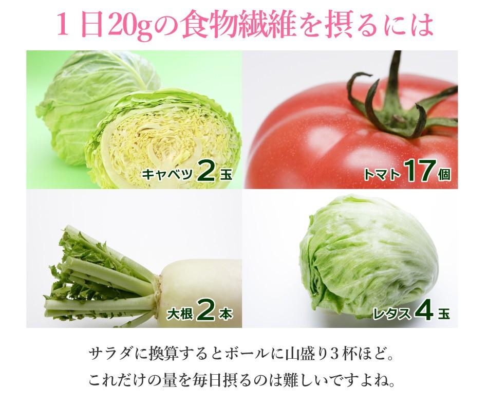1日20gの食物繊維