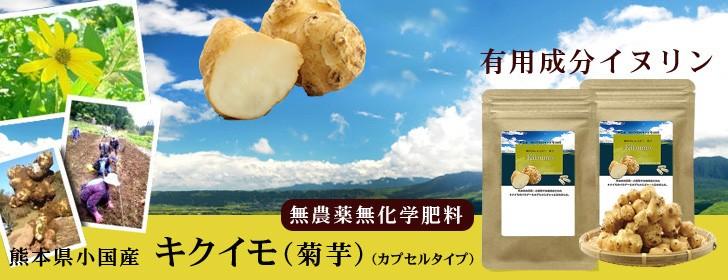 菊芋 キクイモサプリメント