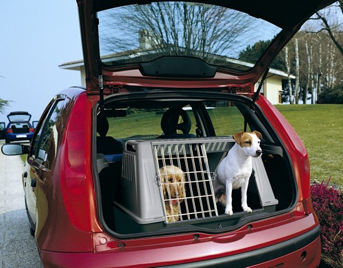 犬の車用品ドライブ、アウトドア