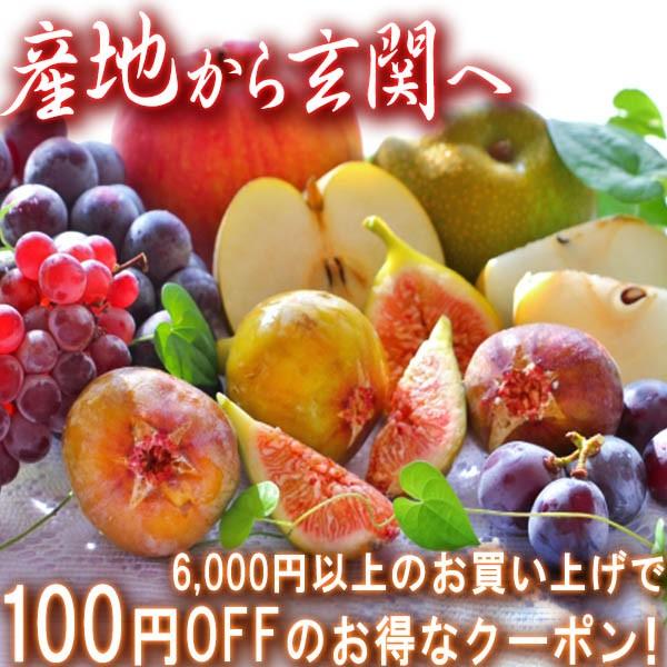 【全商品対象100円offクーポン】