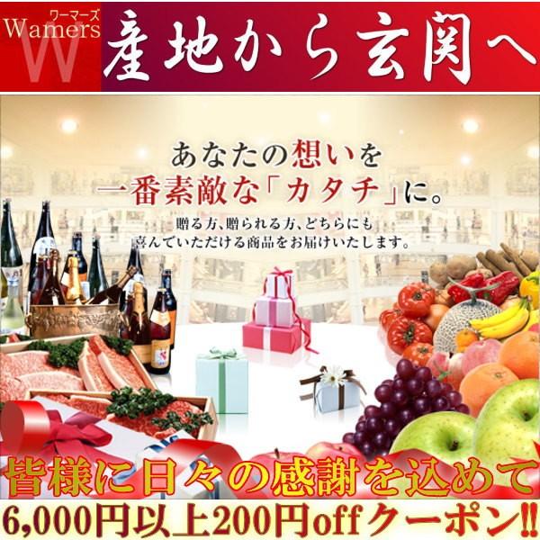 【全商品対象200円offクーポン】