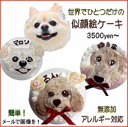 犬似顔絵ケーキ,誕生日,バースデー,記念日,人気プレゼントWANBANAワンバナ,無添加ドッグフード