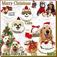 犬,犬用,クリスマスケーキ,Xmas,クリスマス,ディナー,セット,人気,ギフト,WANBANA,ワンバナ