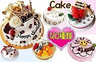 犬用ケーキ,お誕生日,バースデーCAKE全種類一覧