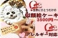 犬用ケーキ,世界に一つだけの似顔絵ケーキ無添加で人気プレゼント
