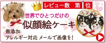 犬用,ケーキ,世界,1つ,似顔絵,立体,お誕生日,フード,無添加,帝塚山,WANBANA,ワンバナ