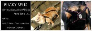 犬のレザーハーネス