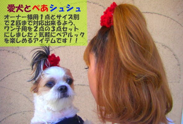 犬とペアシュシュ