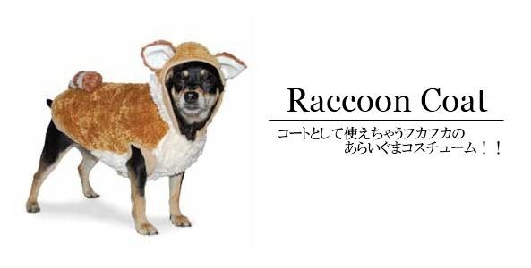 犬のコスチューム