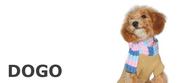 犬 セーター
