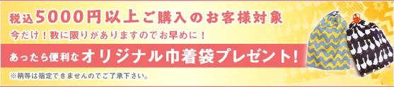 プレゼント企画!税込み5000円位上お買い上げのお客様に、あったら便利なオリジナル巾着袋プレゼント!数量限定!!