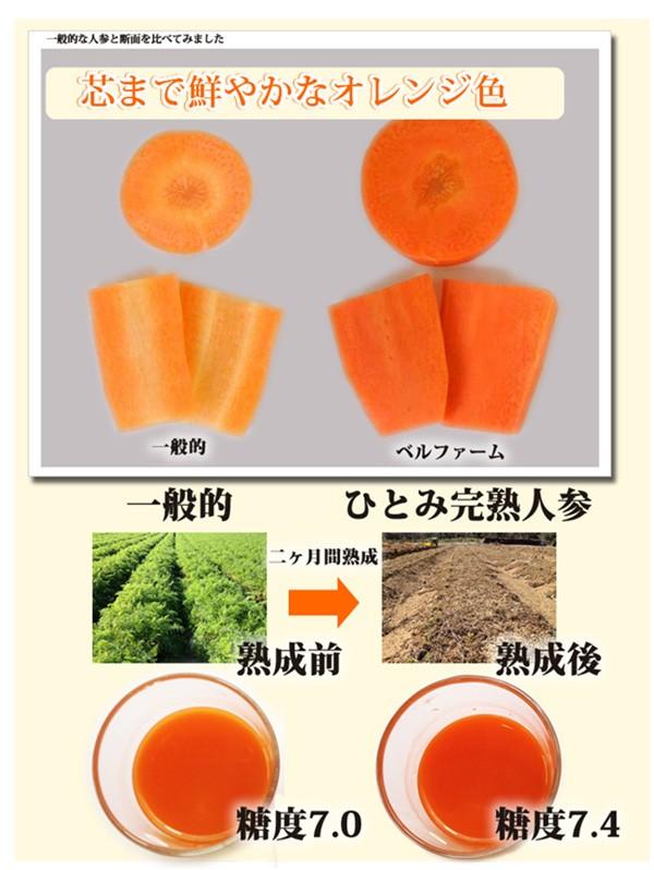 芯まで鮮やかなオレンジ色 ひとみ完熟人参
