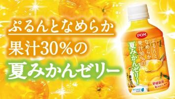 ぷるんとなめらか 果汁30%の夏みかん