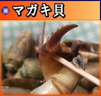 ハシリ貝(マガキ貝)