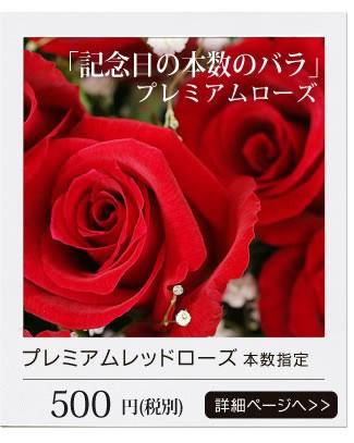 プレミアムレッドロース 記念日の本数のバラ