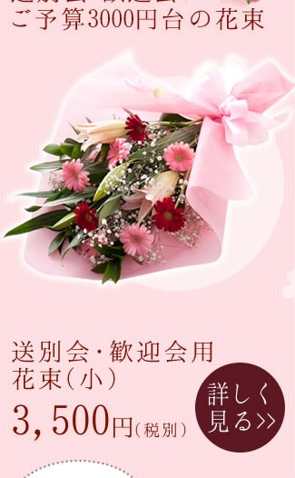 送別会・歓迎会にご予算3000円台の花束 送別会・歓迎会用花束(小)