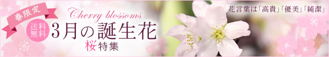 3月誕生花