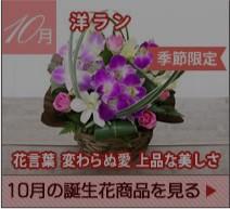 10月の誕生花 洋ラン