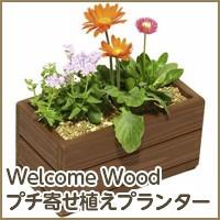 Welcime Woodプチ寄せ植えプランター