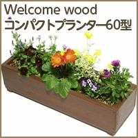 Welcome Woodコンパクトプランター60型