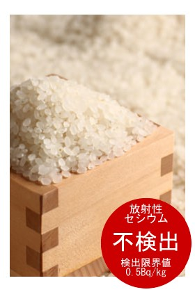 宮崎県産 コシヒカリ 10kg