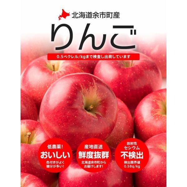北海道余市産りんご