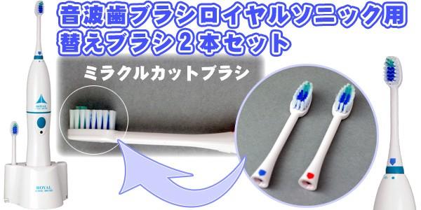 音波歯ブラシ ロイヤルソニック用替えブラシ2本セット