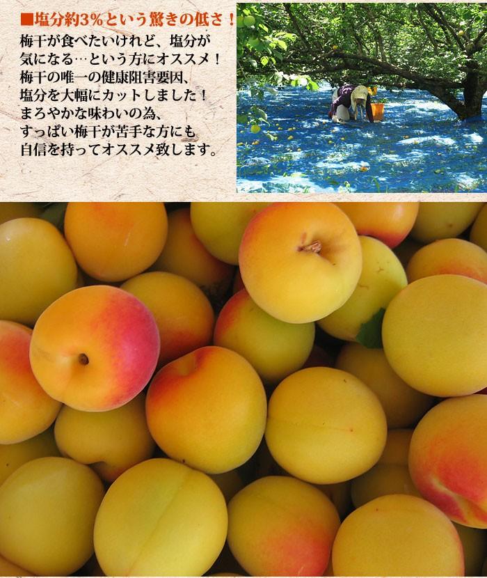 【お試し500g】減塩 紀州産 南高梅 つぶれ梅 はちみつ