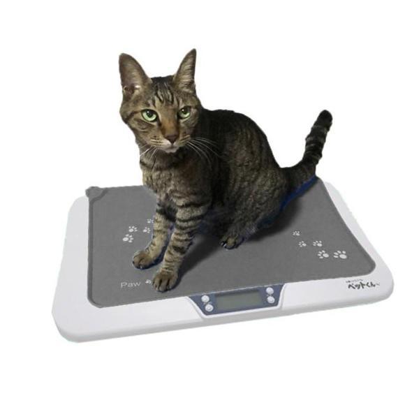 体重計 猫 ペットスケール 動物用 猫用 子猫 キャット ペット用体重計 ねこ ネコ 滑らない マット付き デジタルスケール  ペット体重計 5g単位 wide 20