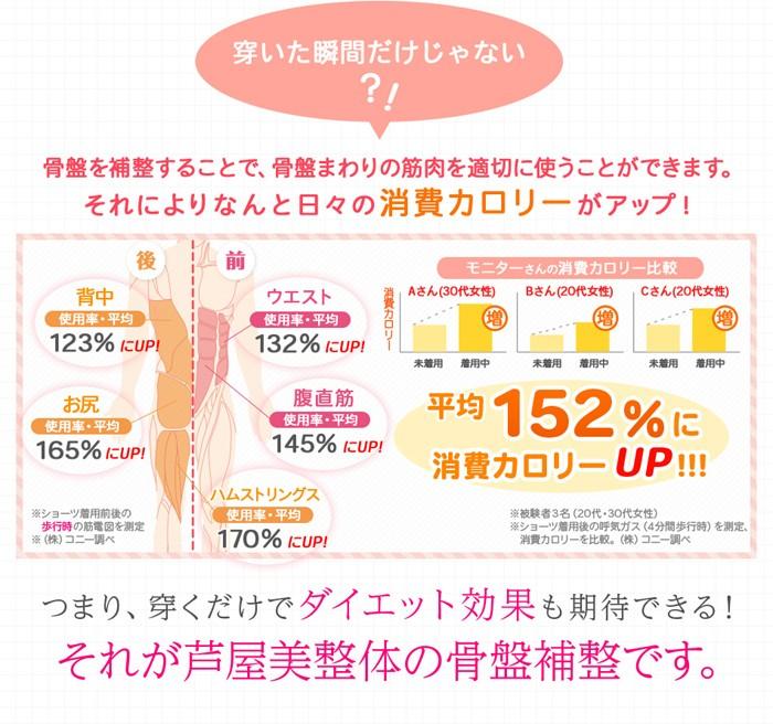芦屋美整体骨盤スッキリショーツ2016【2枚組】