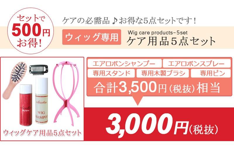 ウィッグ専用品が5点セットでお得に!3,500円が3,000円の説明トップ画像