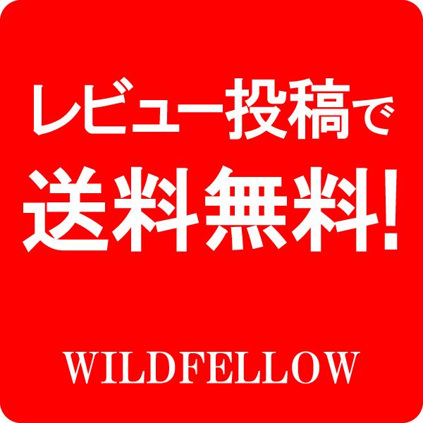 レビュー投稿で送料無料!