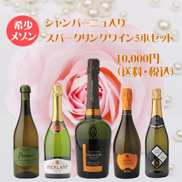 希少シャンパン入り!スパークリングワイン5本セット