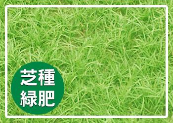 芝種・緑肥